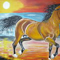 Koń na tle zachodu słońca