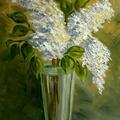 biały... (olej na płótnie 40x50)