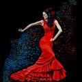 Flamenco: La bailaora del Sur